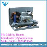 Kühlraum-oder Kaltlagerungs-Kompressor und kondensierendes Gerät