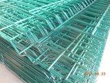 Rete fissa redditizia della rete metallica del fornitore professionista/rete fissa di Gaden con l'alberino