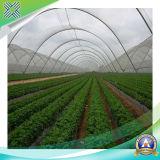 HDPE con la rete UV dello schermo 20%-40%