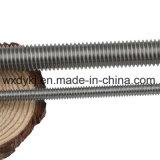 En acier inoxydable de la tige filetée de filetage standard