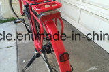 電気バイクのブラシレスMortorのリチウム電池の/Adult都市Eバイクの/StreetのEバイク(SY-E2819)