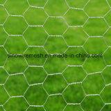 高品質の鳥小屋六角形ワイヤー網の六角形の金網