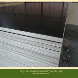 18 mm de madera contrachapada marina para la Construcción