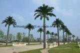 인공적인 정원 훈장 큰 임금 코코야자 나무