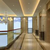 ホテルの家具のプロジェクトのための装飾的な現代壁パネル