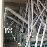 Constructeur de fraiseuse de farine de blé