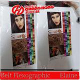 Печать Machinefor Changhong полиэтилена Flexographic пластиковую упаковку (CH884-800F)