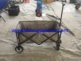 Strand-Lastwagen mit kühlerem Beutel