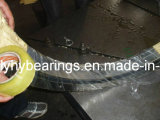 Vuotamento Ring Bearings per Excavator e Crane (012.35.980)