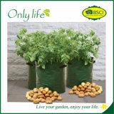 Onlylife PET wachsen haltbarer im Freien Gemüsegarten-Pflanzer Beutel