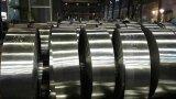 PPGI/ha preverniciato le bobine d'acciaio galvanizzate