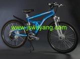 Elektrisches Fahrrad (JSEB-003)