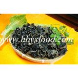 1.5-2cm deshidratado sabroso hongo blanco Volver