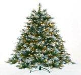 Weihnachtsbaum Xrg065mwcx1058al