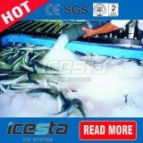 Grande capacidade de 10 toneladas/dia chorume máquina de gelo para peixes/barco/Seafood