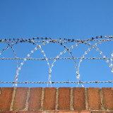 Razor el alambre de púas en China