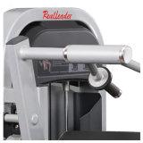 Gymnastique de machine d'exercice de prolonge de triceps posée par matériel commercial de forme physique