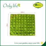 Onlylife sentía el plantador colgante verde movible económico