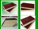 Coffrage en bois de panneau
