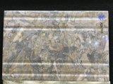 Azulejos 불침투성 파라에 의하여 껍질을 벗기는 Y Pisos De Casa Wall 도와