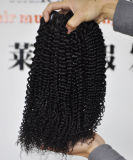 최신 판매 브라질 Virgin 머리 연장 비꼬인 곱슬머리 직물