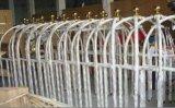 ホテルのロビー(XL-01)のためのステンレス鋼の荷物のトロリー