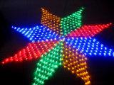 2*3m свет 204 СИД СИД сетчатый светлый большой сетчатый