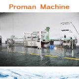Machine à emballer de mise en bouteilles remplissante de l'eau pure de bouteille de prix usine
