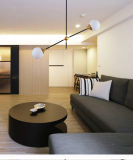 De post Moderne Lamp van het Plafond van de Tegenhanger van de Eetkamer van het Glas Gold+Black