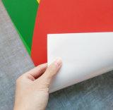 Cmykデジタルのインクジェット印刷PVCビニール(PP)の/Flexのカスタム旗を使用して屋内