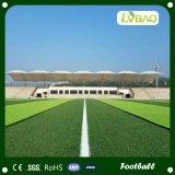 機能スポーツ擬似草、サッカーの合成物質の芝生