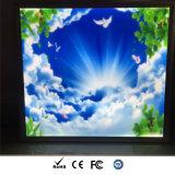 TUV 세륨을%s 가진 알루미늄 단면도 하늘 감 LED 편평한 Panellight, RoHS 의 UL 증명서