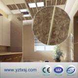 Пожаробезопасная конструкция потолка украшения панели потолка PVC