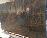 La Chine l'or noir en marbre, Portorož Gold pour la décoration murale en marbre et comptoir