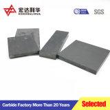 En blanco con Placas de tungsteno High-Purity Ys2t