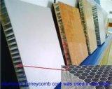 Les produits chauds de la Chine vendent le panneau en gros de nid d'abeilles, matériaux de construction légers
