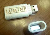 簡単な木USB駆動機構のフラッシュ・メモリ