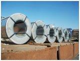 نخبة [بربينت] يغلفن فولاذ [رولّ/بّج/بّغل/كلور] يكسى فولاذ لف