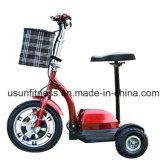500kg&Nbsp; Loading&Nbsp; Capacity&Nbsp; Electric&Nbsp; 800W&Nbsp; Tricycle&Nbsp; Loader&Nbsp; 인력거