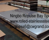 L'acciaio inossidabile di alta qualità riveste il grado (321)