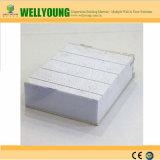 Панель стены сандвича конструкционные материал Китая Wellyoung самая лучшая