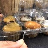 6 Geräten-freier Plastik eingehängter Kuchen-Kasten-Maschinenhälften-Kuchen-Behälter