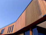 높게 칭찬된 Morden WPC 목제 합성 벽면 벽 클래딩