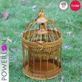 Cor dourada de ferro decoração Conjunto da gaiola de Pássaros