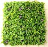 수직 정원 Gu901232203의 고품질 인공적인 플랜트 그리고 꽃