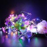 Luzes da corda do diodo emissor de luz da decoração do jardim para o quarto, Wedding