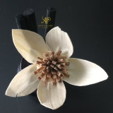 Popular flor de Sola de la orquídea para el difusor de lámina por hecho a mano