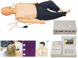 X-Y2300完全機能看護の人体摸型(血圧のシミュレーター)