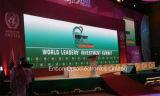 Индикация экрана изготовления P3/P4/P5/P6 крытая HD СИД Китая видео- с умирает бросание 500X1000mm