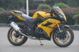 Motocicleta japonesa da rua de Technolagy do projeto popular